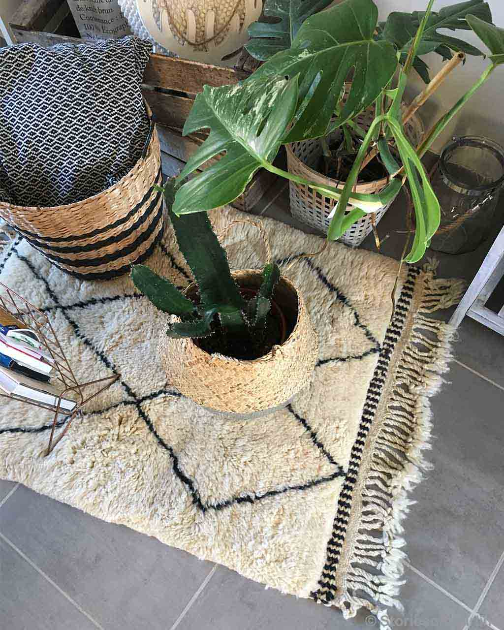 handmade pots with green plant and cactus made by moroccan oriental rugs online