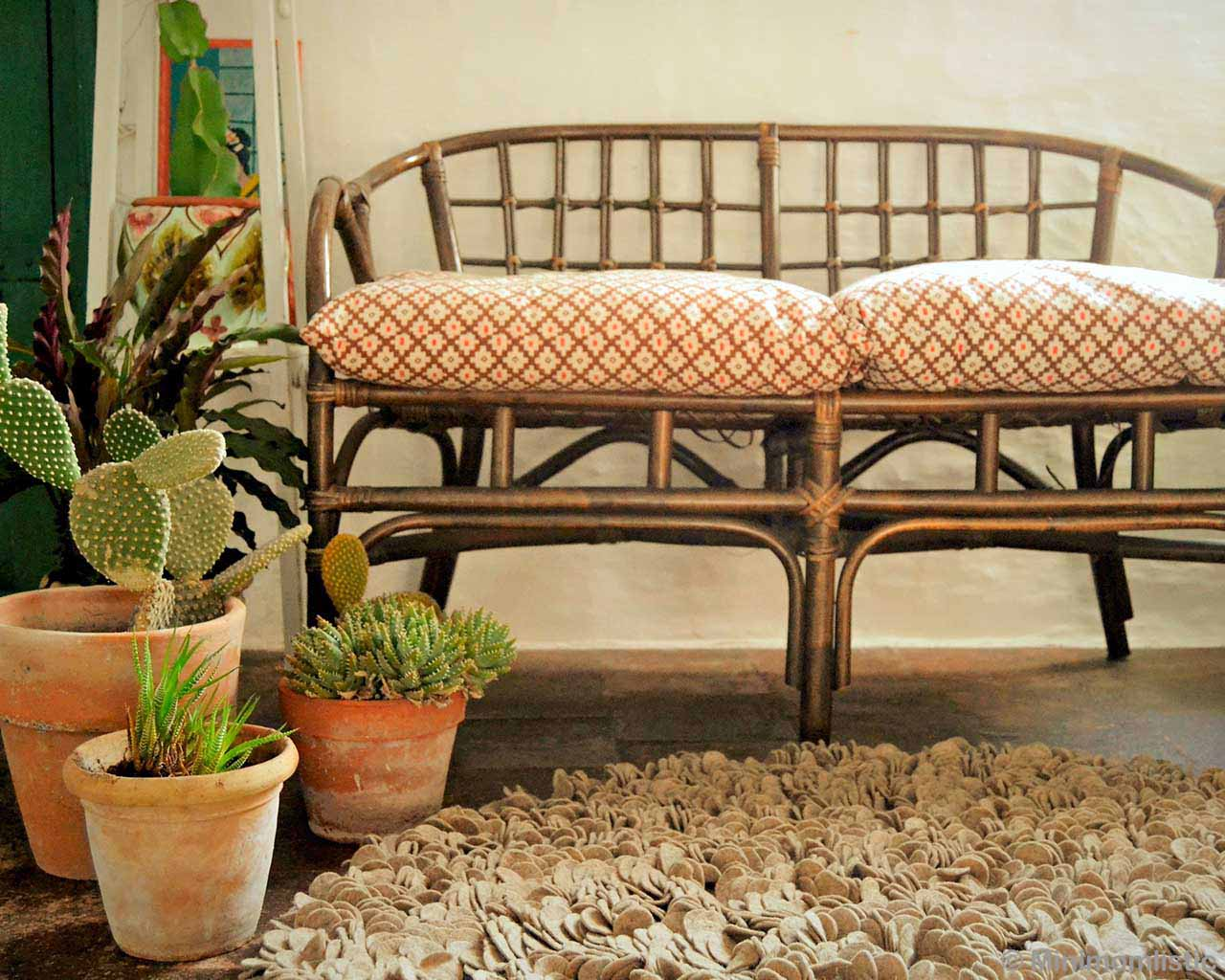 sofa and vase with cactus asian rugs